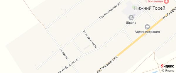 Молодежная улица на карте села Нижнего Торея с номерами домов