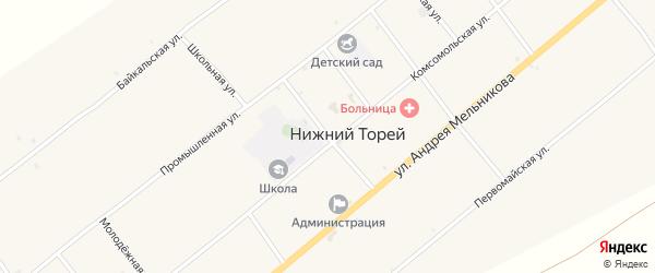 Улица Пушкина на карте села Нижнего Торея с номерами домов