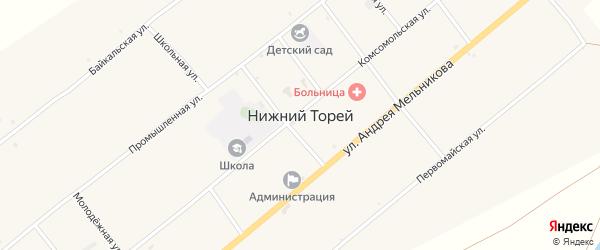 Местность Усть-Торей на карте села Нижнего Торея с номерами домов