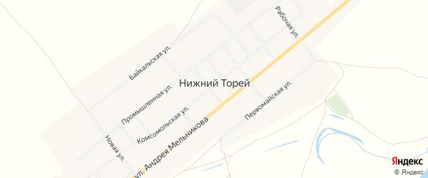 Карта села Нижнего Торея в Бурятии с улицами и номерами домов