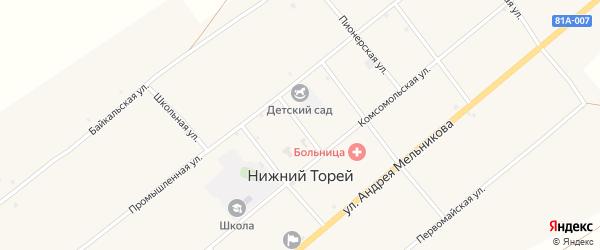 Профсоюзная улица на карте села Нижнего Торея с номерами домов