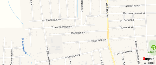 Полевая улица на карте села Петропавловки с номерами домов