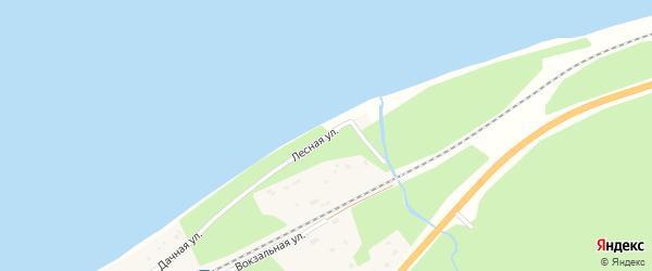 Лесная улица на карте поселка Выдрино с номерами домов