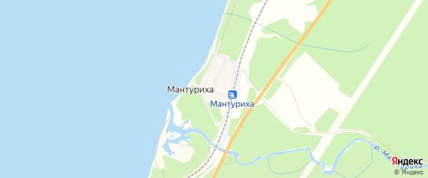 СТ Березка на карте поселка Мантурихи с номерами домов