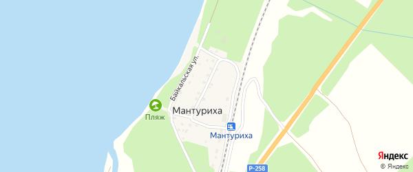 Центральная улица на карте поселка Мантурихи с номерами домов