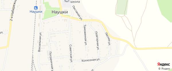 Таможенная улица на карте поселка Наушек с номерами домов