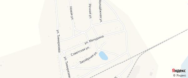 Улица Мичурина на карте Хоронхоя поселка с номерами домов