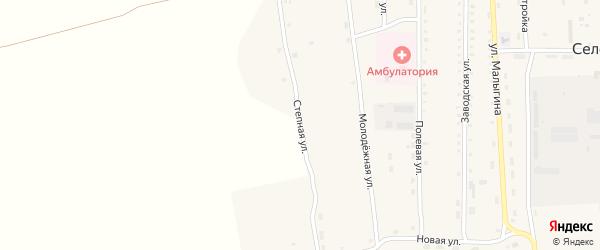 Степная улица на карте села Селендума с номерами домов