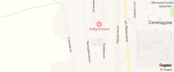 Молодежная улица на карте села Селендума с номерами домов