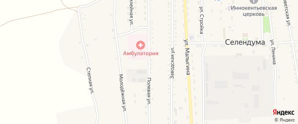 Полевая улица на карте села Селендума с номерами домов