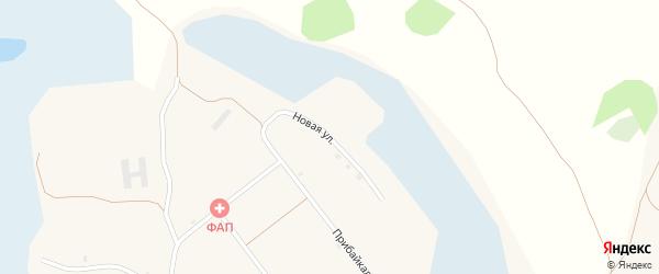 Новая улица на карте села Степного Дворца с номерами домов