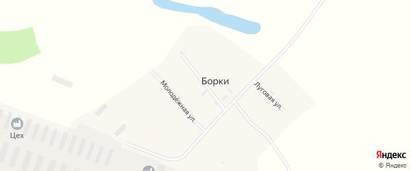 Молодежная улица на карте поселка Борки с номерами домов