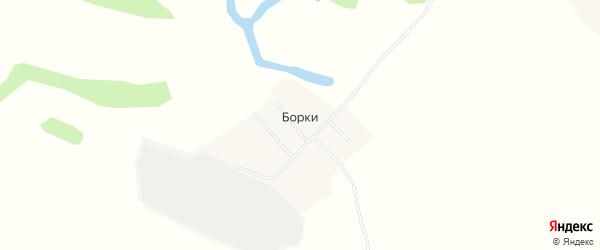 Карта поселка Борки в Бурятии с улицами и номерами домов