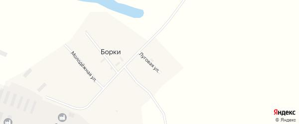 Луговая улица на карте поселка Борки с номерами домов