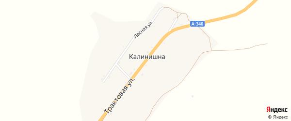 Трактовая улица на карте села Калинишны с номерами домов