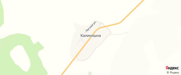 Карта села Калинишны в Бурятии с улицами и номерами домов