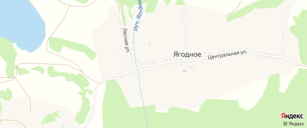 Центральная улица на карте Ягодного села с номерами домов