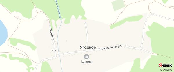 Центральный переулок на карте Ягодного села с номерами домов