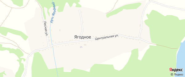 Новая улица на карте Ягодного села с номерами домов