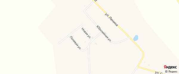 Новая улица на карте села Большое Колесово с номерами домов
