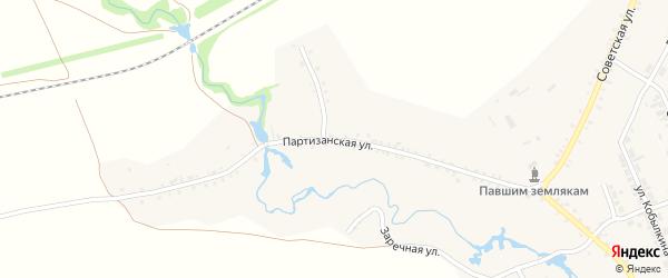 Партизанская улица на карте села Тимлюя с номерами домов