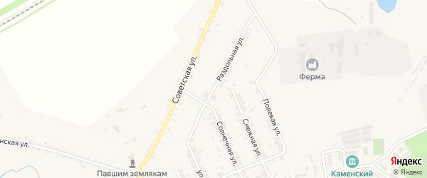 Раздольная улица на карте поселка Каменска с номерами домов