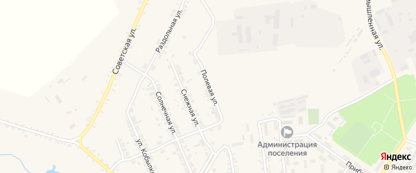 Полевая улица на карте поселка Каменска с номерами домов