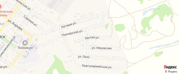 Лесная улица на карте поселка Каменска с номерами домов