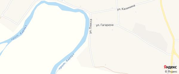Улица Плисса на карте села Кудары с номерами домов