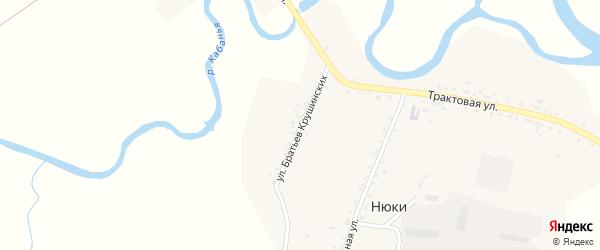 Улица Братьев Крушинских на карте села Нюков с номерами домов