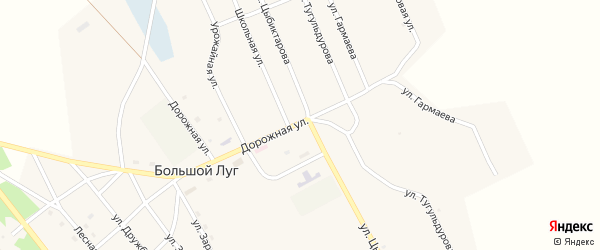 Улица Цыбиктарова на карте улуса Большого Луга с номерами домов