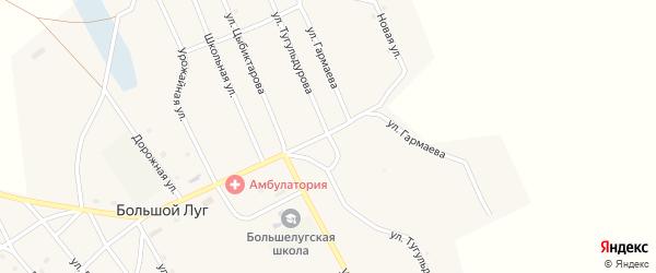 Улица Тугульдурова на карте улуса Большого Луга с номерами домов
