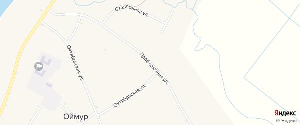 Профсоюзная улица на карте села Оймура с номерами домов