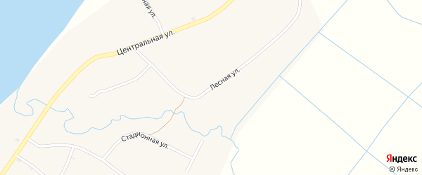 Лесная улица на карте ОП Байкальского прибоя населенного пункта с номерами домов