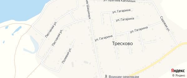 Улица Братьев Шашиных на карте села Тресково с номерами домов