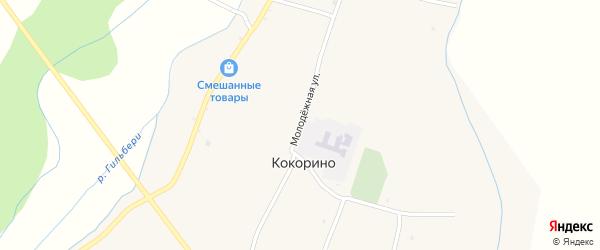 Молодежная улица на карте территории ДНТ Авиатор-2 с номерами домов