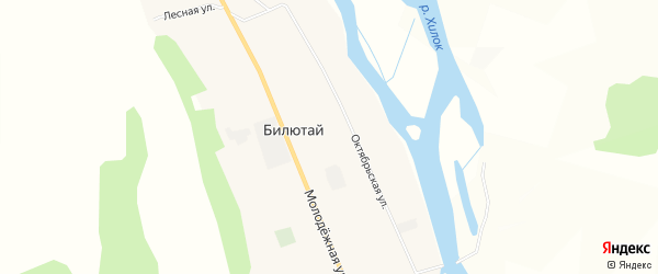 Карта села Билютая в Бурятии с улицами и номерами домов
