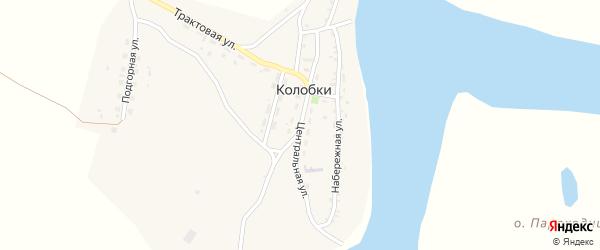 Центральная улица на карте села Колобки с номерами домов