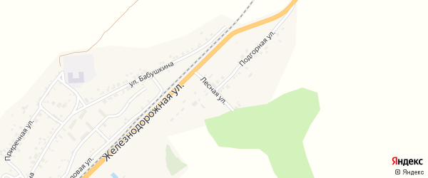 Лесная улица на карте села Солонцов с номерами домов