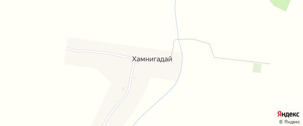 Лесная улица на карте села Хамнигадая с номерами домов
