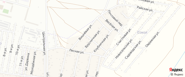 Брусничная улица на карте территории ДНТ Авиатор-2 с номерами домов