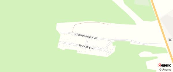 Центральная улица на карте села Старого Татаурово с номерами домов