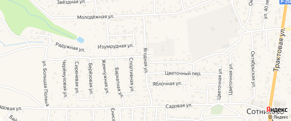 Ягодная улица на карте села Сотниково с номерами домов