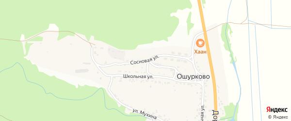 Сосновая улица на карте села Ошурково с номерами домов