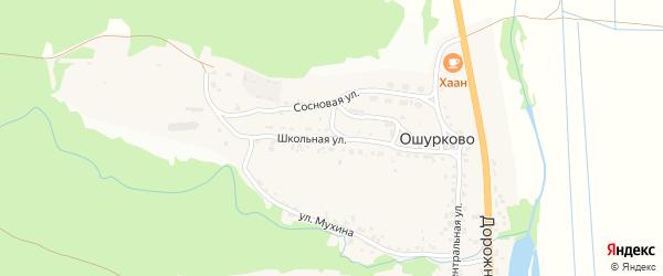 Школьная улица на карте села Ошурково с номерами домов