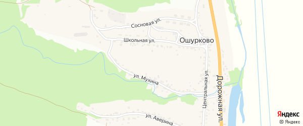 Территория ДНТ Уточкина падь на карте села Ошурково с номерами домов