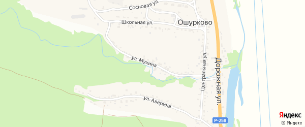 Улица Мухина на карте села Ошурково с номерами домов