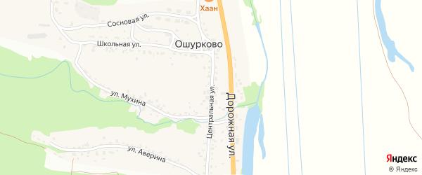 Центральная улица на карте села Ошурково с номерами домов