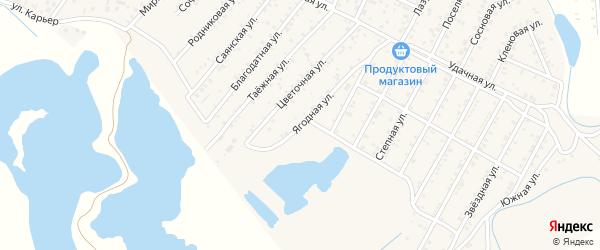Ягодная улица на карте территории ДНТ Лика с номерами домов