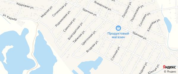 Улица Цветочная квартал Северный на карте села Сужа с номерами домов